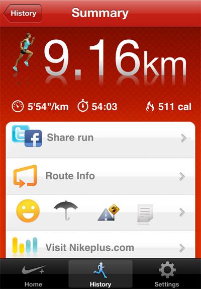 Nikegps1010