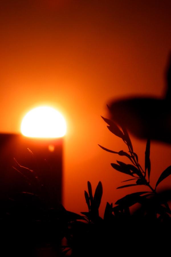 Sunset1204