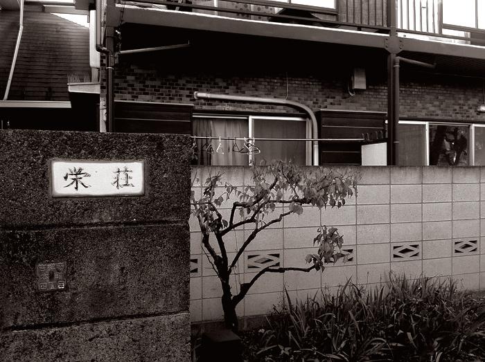 Kichijoji2010_4