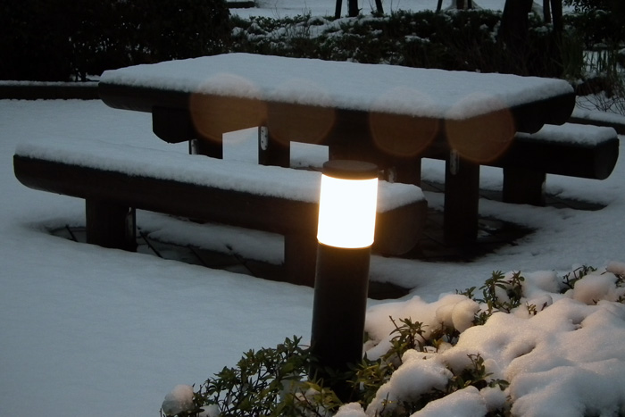 Snow20110215