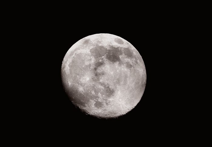 Moon1219