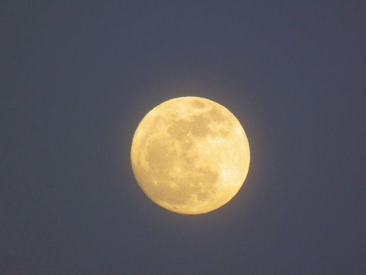 Moon0126