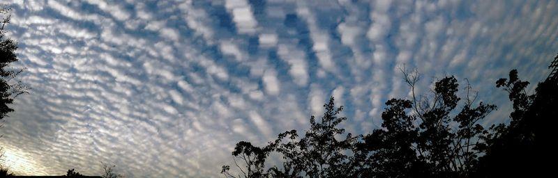 Cloud121013_2