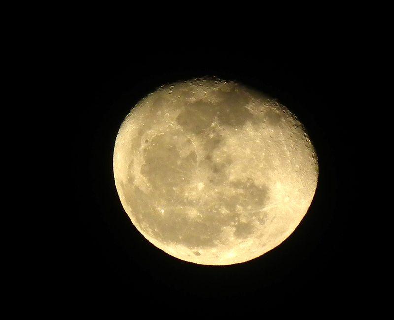 Moon1231