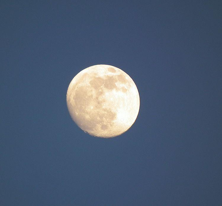 Moon0523