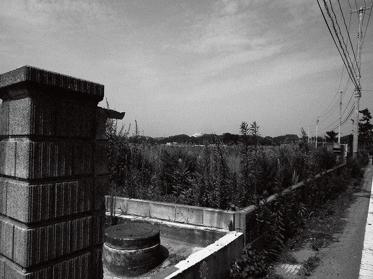 Azuki201308_8