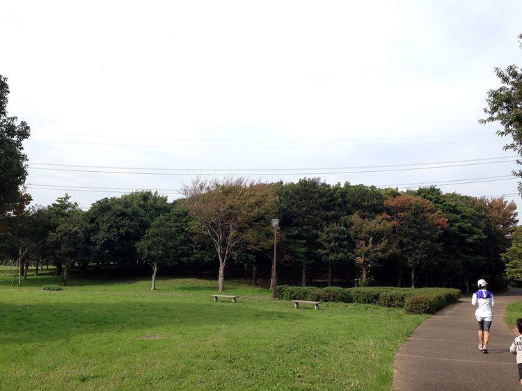 Park2011_1