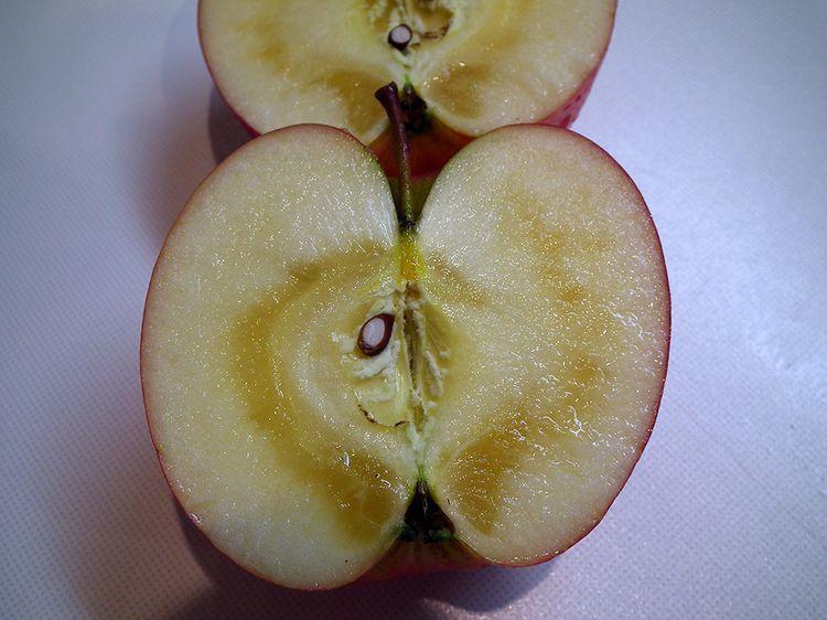 Apple2013_02
