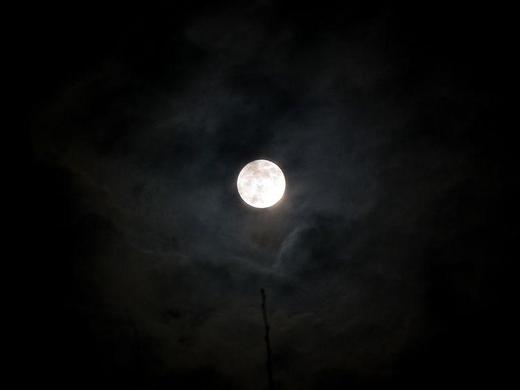 Moon1217_1