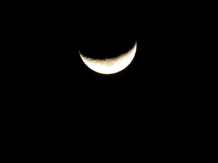 Moon0204