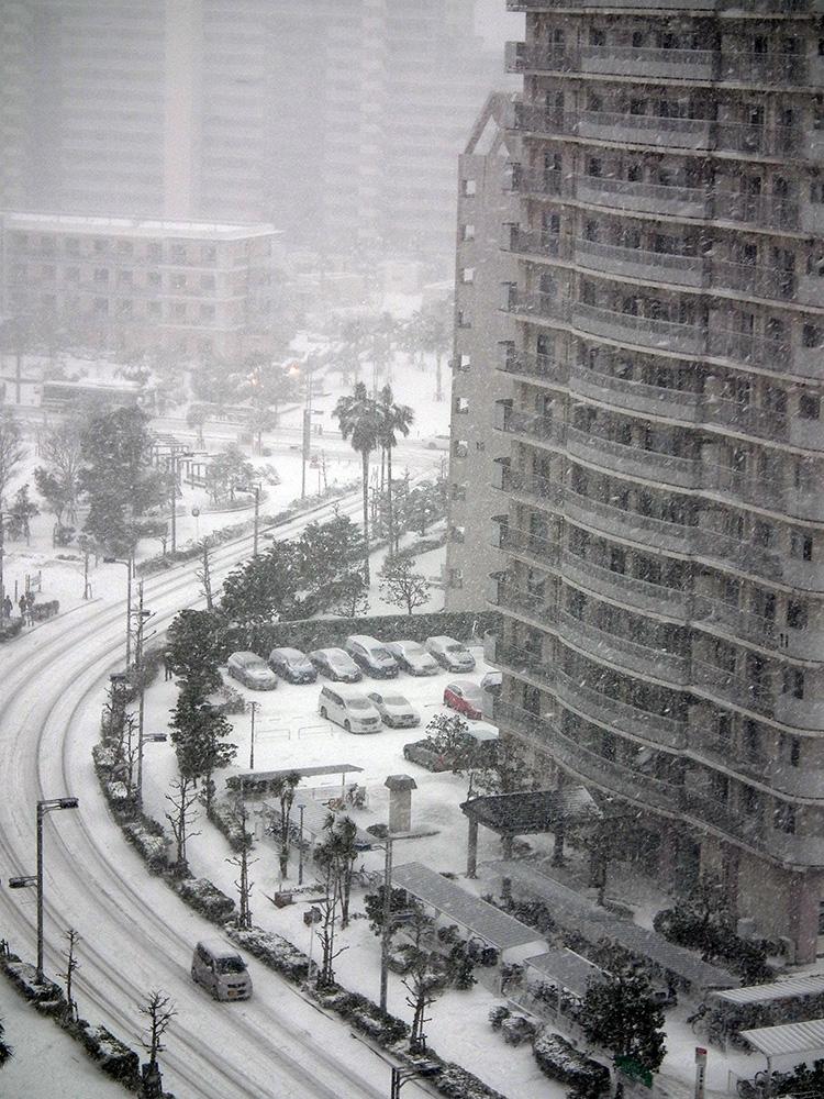 Snow0208_3