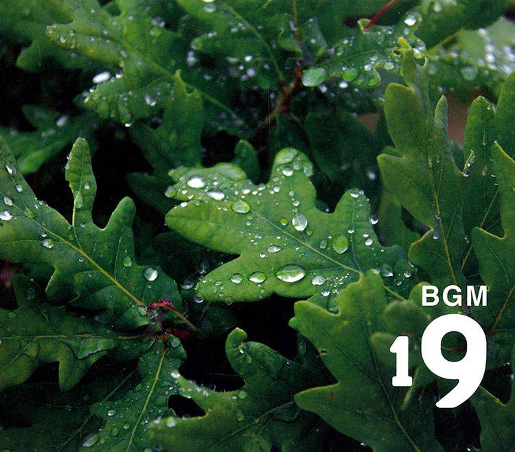 Bgm19_1