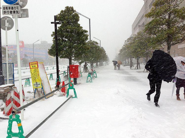 Snow0208_1