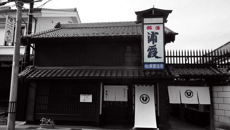 Urakasumi201408_2