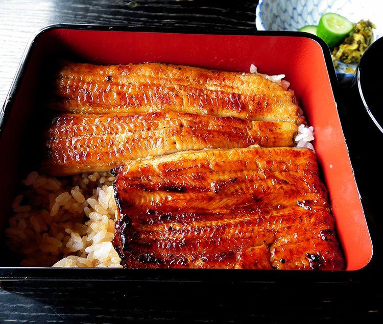 Maekawa04
