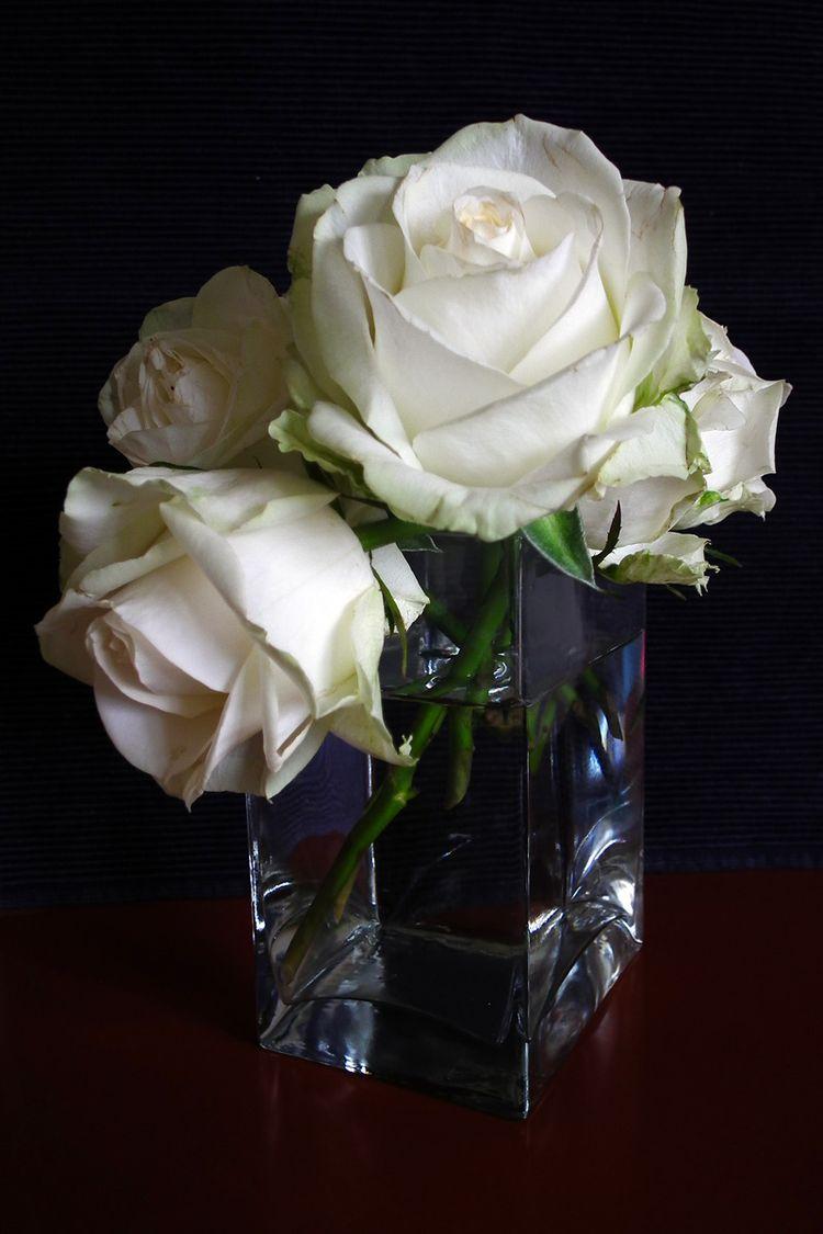 Flower2015006_2