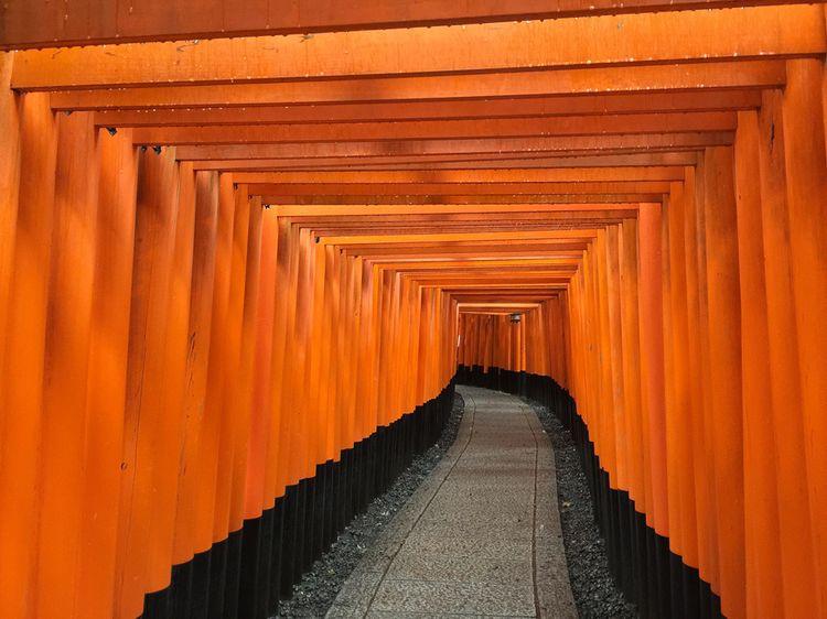Kyotofall01