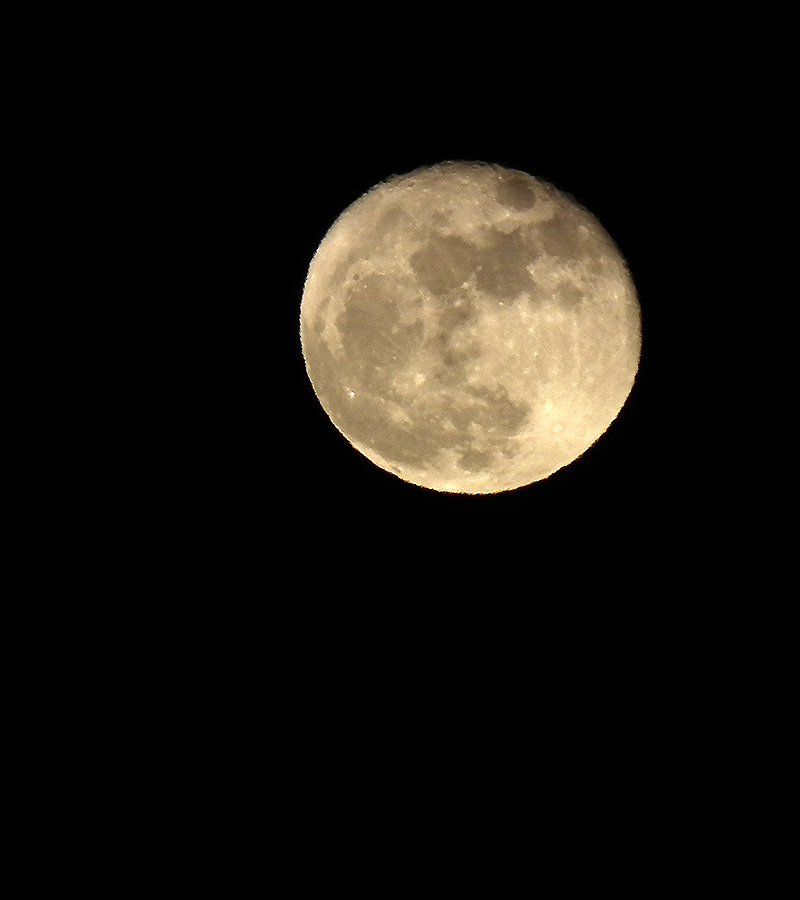 Moon20151127