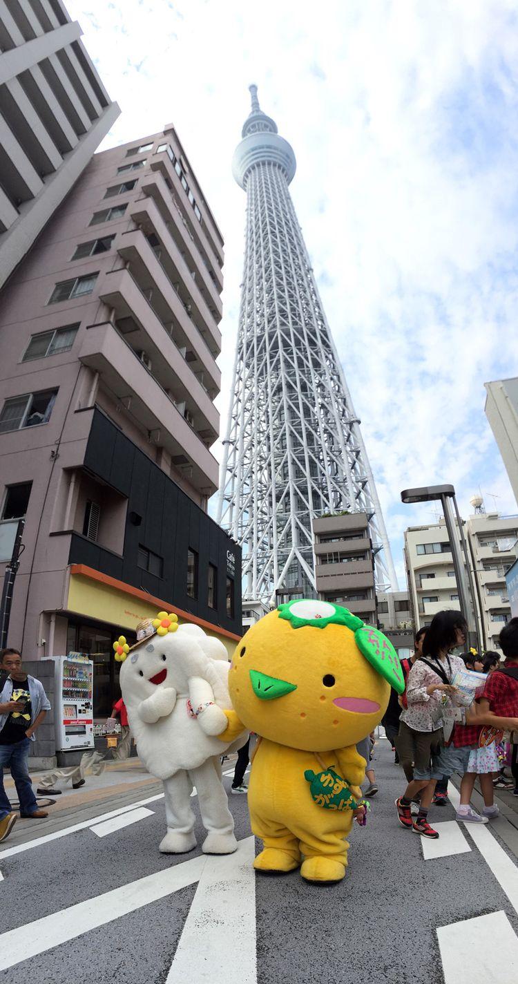 Sumida2016_05