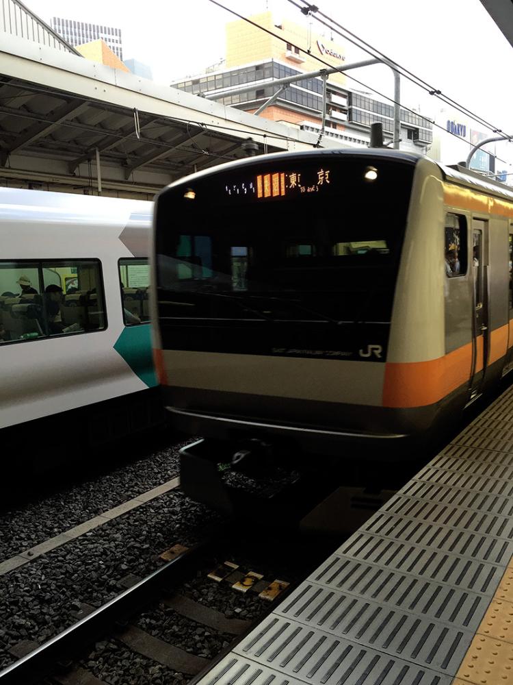 Shibazakitei20160809_4