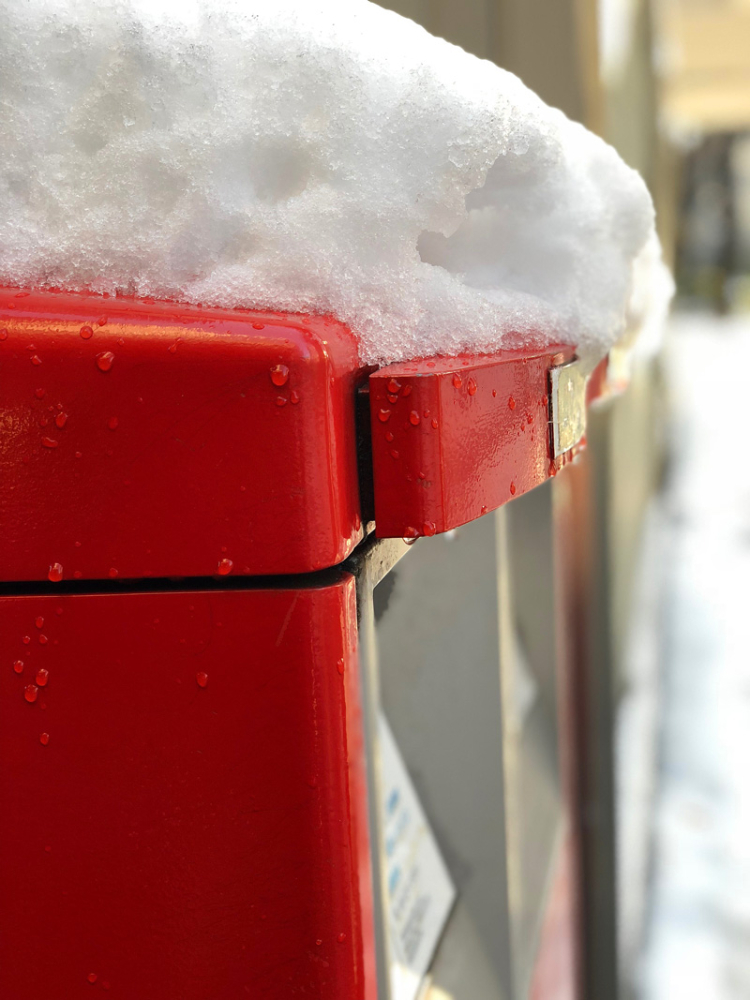 Snow20180123_3