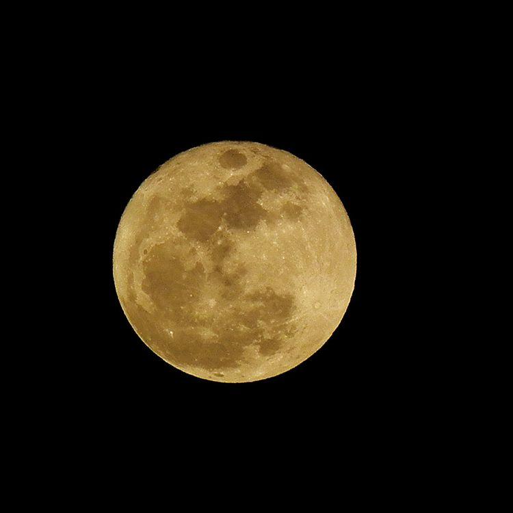 Moon20150204