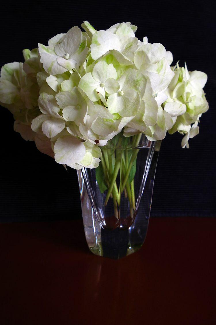 Flower2015006_1
