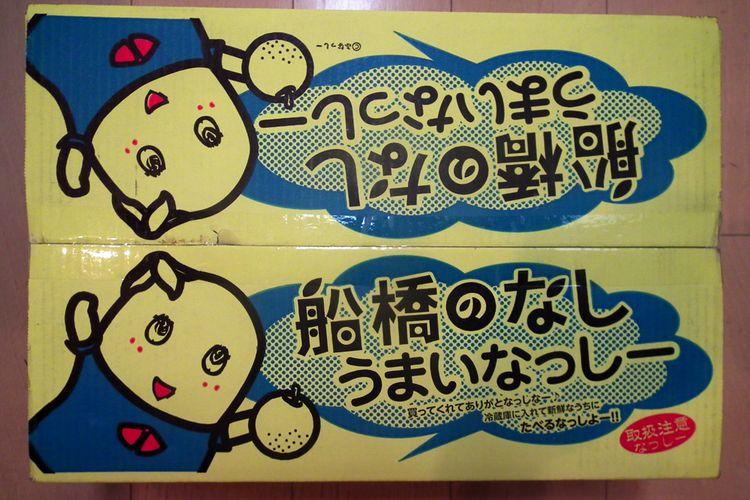 Funabashinashi_kosui2015_01