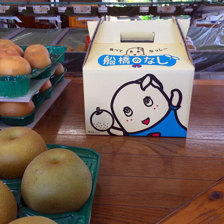 Funabashinashi_kosui2015_03