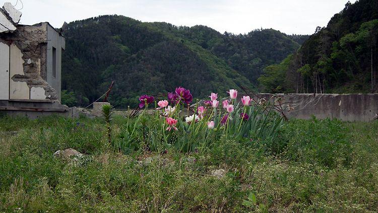 Ookawa01