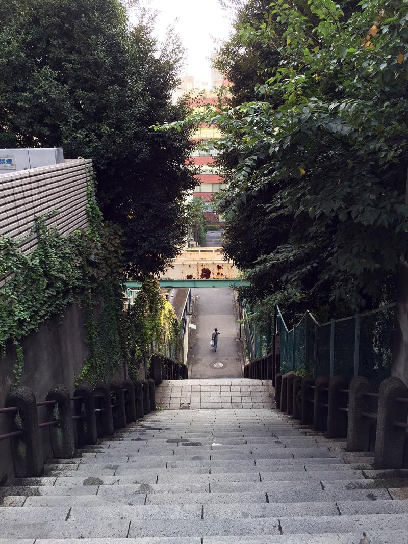 Sarugaku02