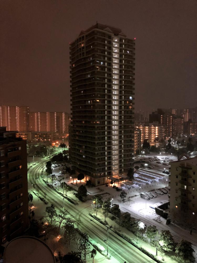 Snow20180122_1