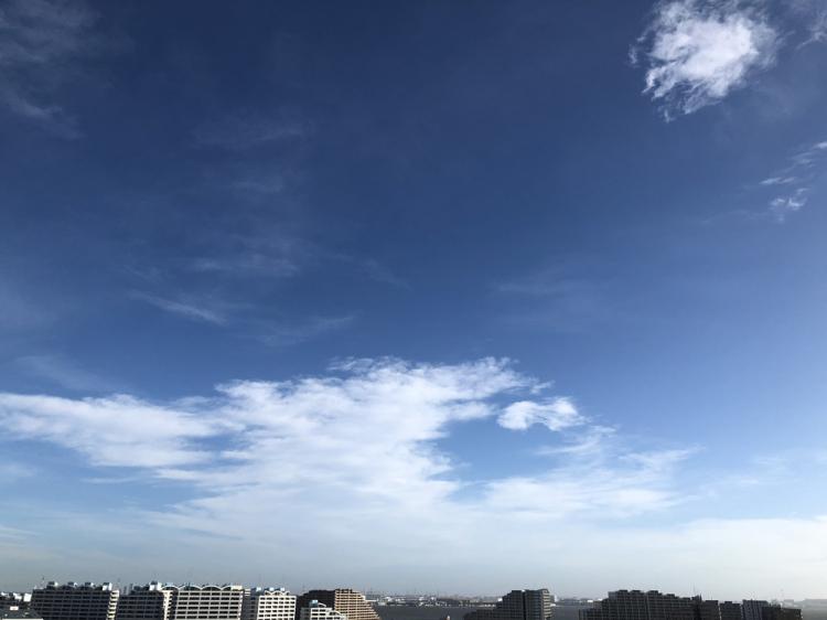 Taifu24_2