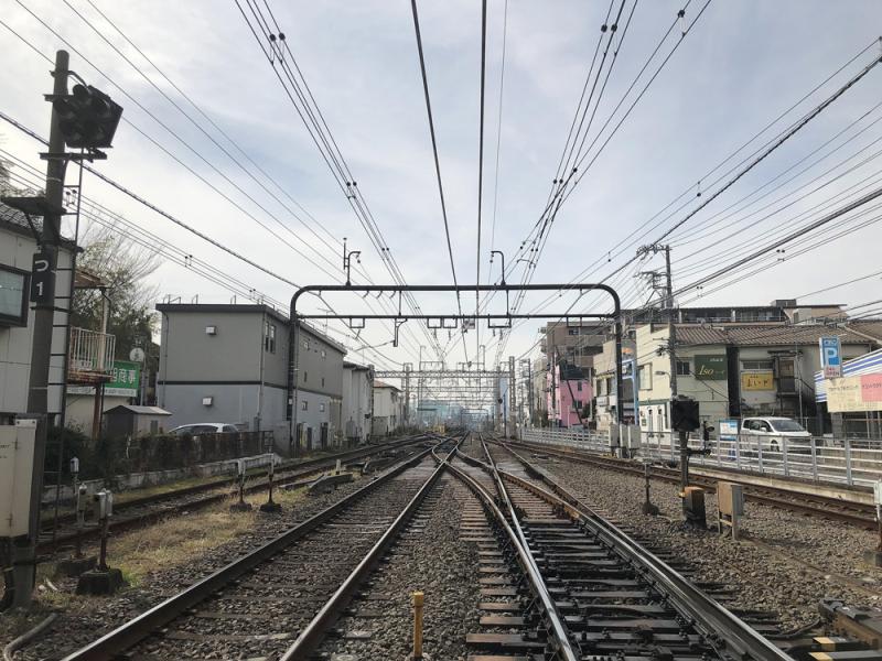 Shibazakitei20190206_5