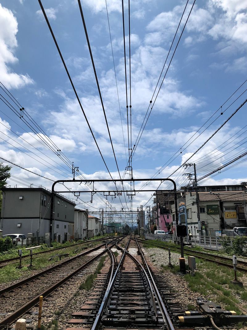 Shibazakitei20190611_4