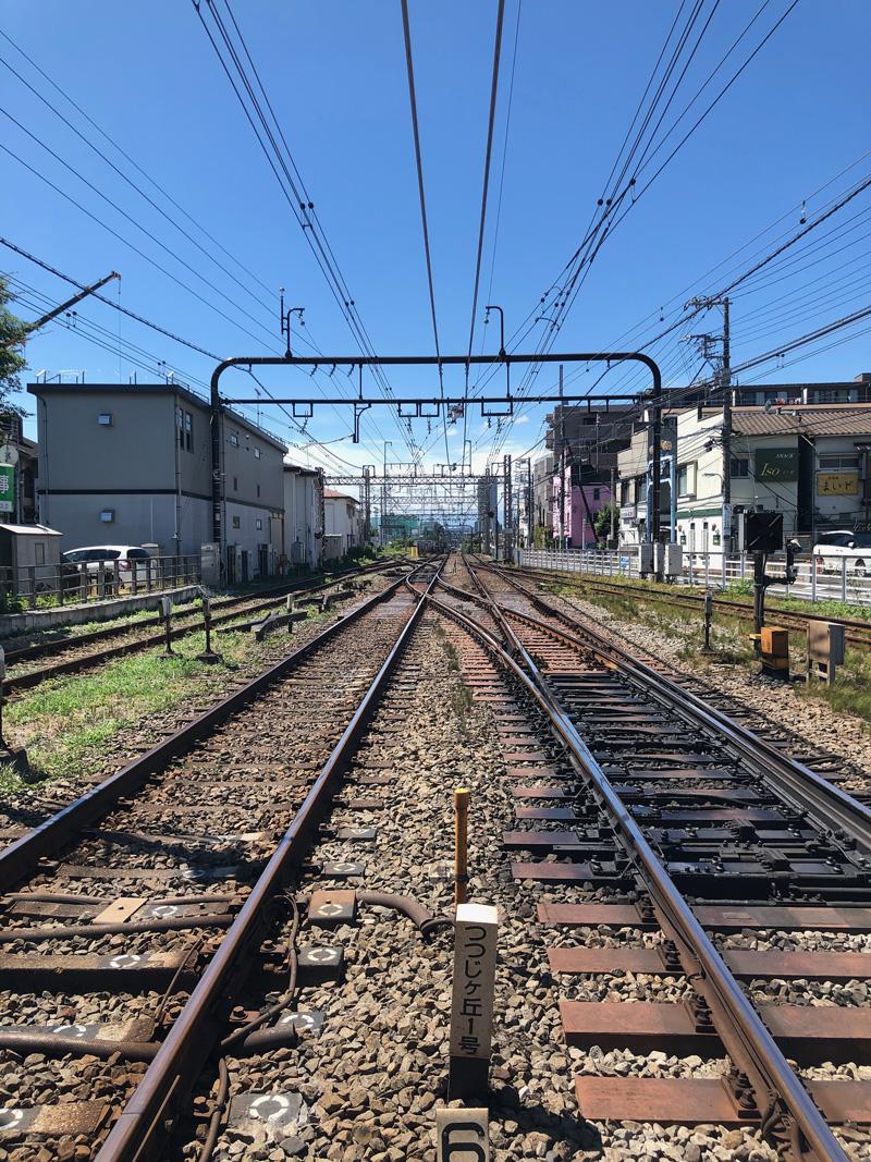 Shibazakitei20200904_4