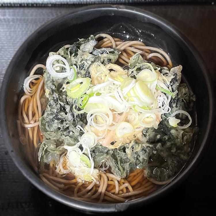 Iwashita_yomoda01