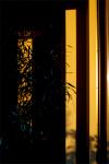 Sunset0112_2